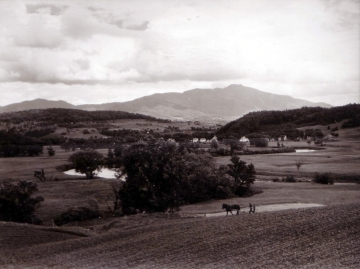 Farmland in front of Mt. Mansfield
