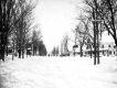 Street in the Snow