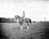 Mounted Soldier on Horse in Open Field