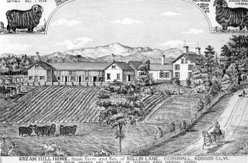 Drawing of Cream Hill Home