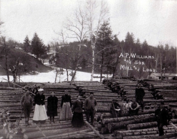 A.P. Williams & Son Mill and Logs