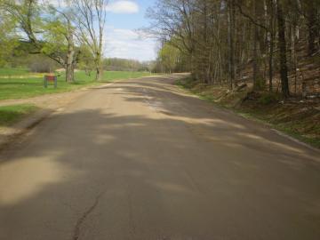 Road at Shelburne Farms
