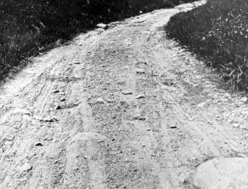Old Earth Road