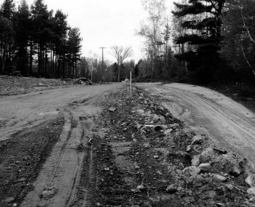 """""""Y"""" In Rural Road"""