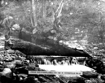 Dam on Stevensville Brook