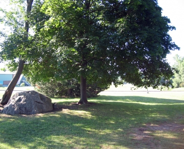 Glacial Erratic atop Athletic Fields