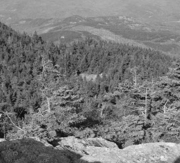 Buildings on Cleared Area of Camel's Hump: Reshot