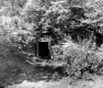 Adit at Ely Mine