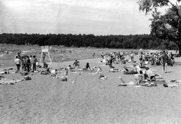 Sunbathing at North Beach