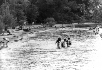 Swimming at Leddy Beach