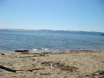 Leddy Beach
