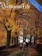 Autumn Stroll in Clarendon