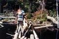 Hikers crossing a log bridge