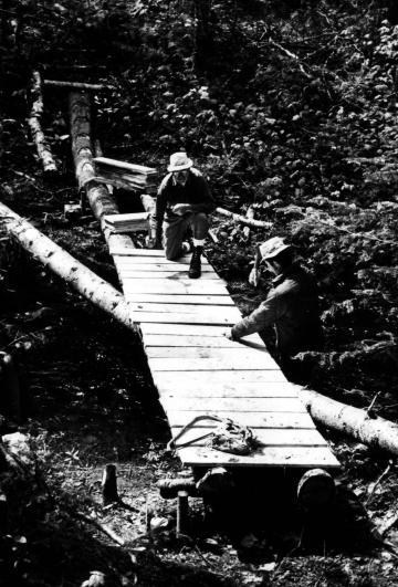 Construction of bridge across Beaver Meadow