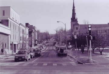 Dutch Elm Disease on College Street 1980s