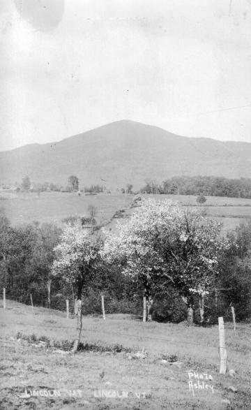 Lincoln Mountain