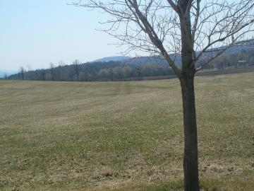 A field On Shelburne Farms