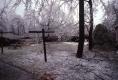 Burlington Ice Storm - back yard