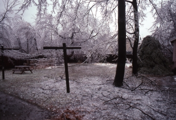 Burlington Ice Storm - back yard