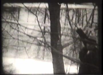 1927 Flood Movie Screenshot: Rutland 12