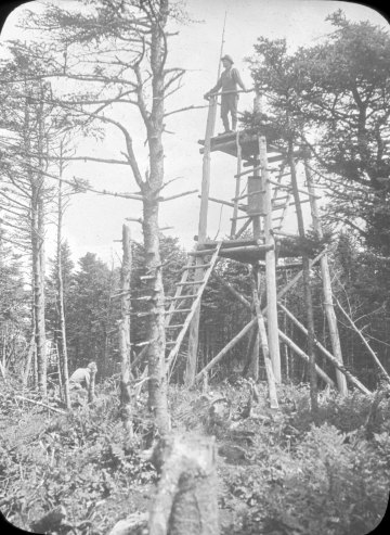 Forestry Tower on Mt. Pico