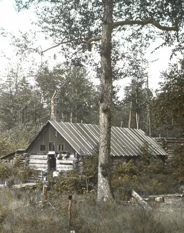 Camp Lizzie