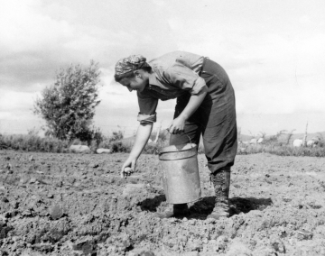 Woman Planting at Trapp Family Farm