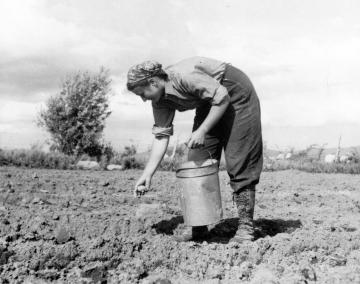 Woman Planting at Trapp Family Farm