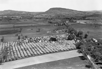 Aerial View of Ferrisburg with Fruit Farm