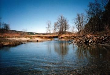 River Near Mayo Farm