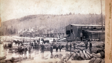 A Logging Outfit at Lumber Mill