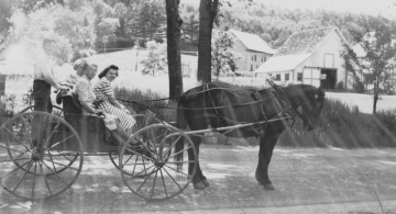 A man and two women in a carriage with a boy on the back