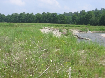 A Field Slopes into Huntington River