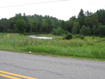 From a Road in North Wolcott