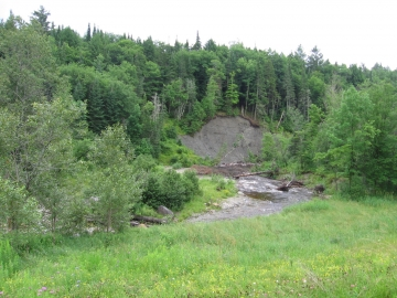 A High, Steep Bank on North Wolcott River