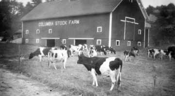 Columbia Stock Farm
