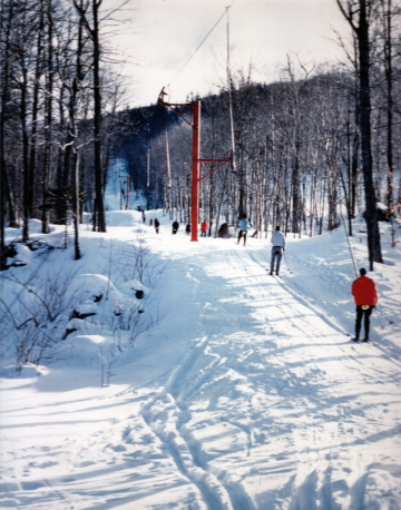 A Line of Skiers