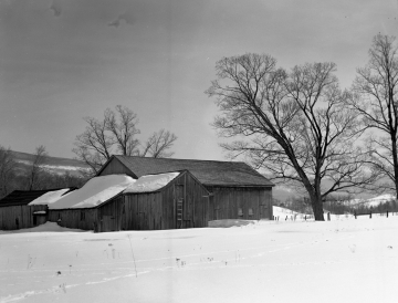 Arlington Barns in the Winter
