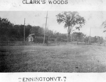 Clark's Woods