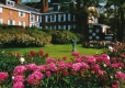 Brick House Framed by Peonies