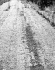 Bit. Road Surface