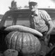 Man in Truck with large squash