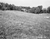 Fogg Property, Field and Forested Hills