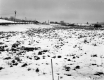 Brouilette Property, Snow-Covered Fields
