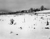 Brouilette Property, Fenced Farm Fields