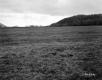 Gratton Property, Farm Fields