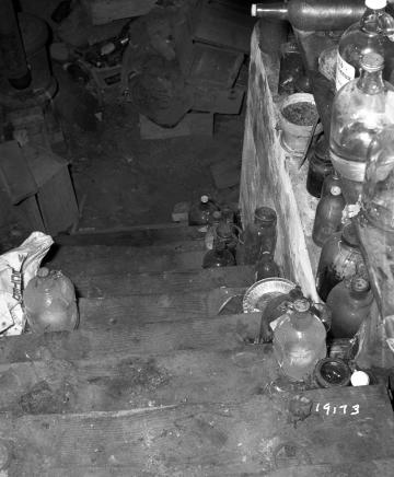 Adams House Cellar