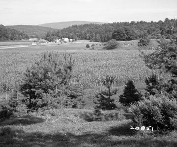 Appleton Property East-Southeast View Field