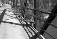 Broken Rail on Bridge
