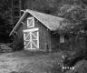 Barn in Woods